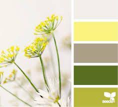 сочетания цветов в природе - Поиск в Google