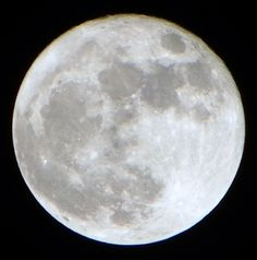 My Super Moon Contribution Picture.