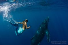 These Gorgeous Photographs Will Have You Believing In Mermaids