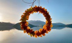 Artista representa os vários ciclos da vida com esculturas na natureza. #Nature #Natureza #Fotografia #Photography