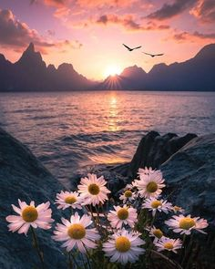 ~The most beautiful sunset is when you have it with your beloved one and most beautiful sunrise is quite the same~ Tumblr Wallpaper, Nature Wallpaper, Wallpaper Backgrounds, Wallpaper Lockscreen, Surfing Wallpaper, Hipster Wallpaper, Cute Backgrounds, Photo Wallpaper, Phone Backgrounds