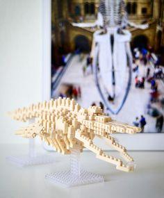 Blue whale skeleton model #nanoblock #bluewhale #skeleton #380pcs Whale Origami, Skeleton Model, Nano, Blue Whale, Instagram, Jewelry, Jewlery, Jewerly, Schmuck