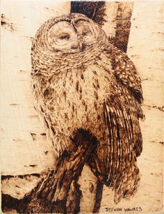 Mothers Day Special!  Owl Wood Burning by HAWKESPYROGRAPHY $95.00