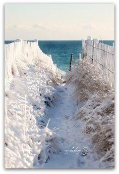 The beach is beautiful even in the winter.  my duxbury blog