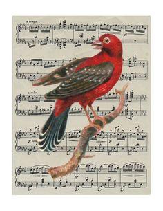 red bird vintage