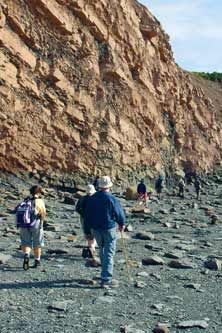Joggins Fossil Cliffs: UNESCO World Natural Heritage Site at Joggins, Nova Scotia, Canada