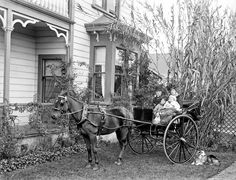 Dr Ernest Edward Porritt and family in a trap outside their home at 59 Ingestre Street, Wanganui, ca. Vintage Photographs, Vintage Photos, Bungalow House Plans, Blog Images, Vintage Girls, Historical Photos, Alter, Past, Old Things