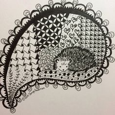 Tangle Art Hedgehog Print 8 x 8 by andersongirl57 on Etsy