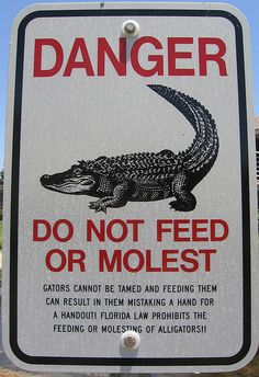 I don't know what bothers me more… the fact that someone would molest an alligator or the fact that it is so prevalent they needed to make a sign asking people not to do it.