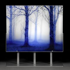Trees in Twilight by Paul Messink. This kiln-worked glass panel is hand painted…