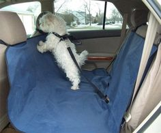 Flexzion Dog Bench Seat Cover Waterproof Pet Puppy Cat Hammock Blanket Travel Mat Safety Protector for Car SUV Trucks Vehicles Rear End Machine Washable in Blue >>> Learn more by visiting the image link. (This is an affiliate link) Dog Car Accessories, Bench Seat Covers, Cat Hammock, Dog Car Seats, Dog Shower, Dog Safety, Dog Blanket, Dog Diapers, Pet Puppy