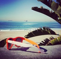 A day at the beach isn't complete without sunglasses.