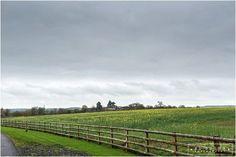 The beautiful fields around Mythe Barn