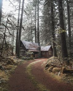 I would love to be here. Way back in the middle of nowhere. Look at that gorgeous cabin, Bug!!! H.G.