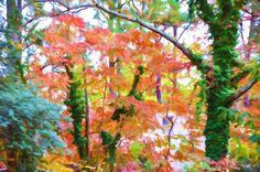 I uploaded new artwork to fineartamerica.com! - 'Autumn Trees 8' - http://fineartamerica.com/featured/autumn-trees-8-lanjee-chee.html via @fineartamerica