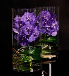Vanda Orchids. Simply perfect. www.joyandcoevents.com