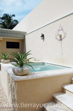 plunge pool in Merida - perfect next to a wall of the house. Small Swimming Pools, Small Backyard Pools, Small Pools, Swimming Pool Designs, Jacuzzi, Merida, Mini Piscina, Dipping Pool, Pool House Designs