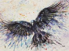 watercolor crow tattoo - Google Search