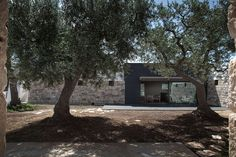 © Luca Zanaroli Architect