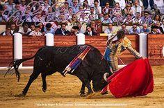 Nuestras raíces, cultura, pasión... #Tauromaquia #ValladolidEsTaurina #Septiembre2016 #ValladolidEsTaurina #TienesQueVenir #FeriaTaurina #NuestraSeñoraDeSanLorenzo