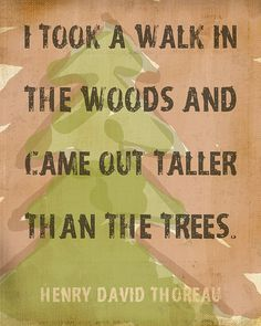 """""""I took a walk in the woods and came out taller than the trees."""" -Henry David Thoreau"""