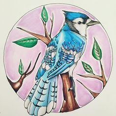 Stunning Blue Jay artwork created by @_love_draw__ with their new Chameleon Pens.   #chameleonpens #art #artwork #artist #draw #drawing #blue #jay #bird #illustration #colour #color #colouring #coloring