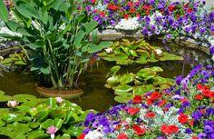 die 205 besten bilder von gartenteich anlegen backyard patio backyard ponds und gardens. Black Bedroom Furniture Sets. Home Design Ideas