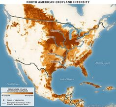 North American cropland concentration