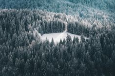 Alex Strohl's Photography