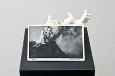 Alessandro Piangiamore Untitled, 2010 Coral, postcard, pedestal x 18 x 100 cm) Land Art, Photoshop, Expo, Coral, Oeuvre D'art, Installation Art, Art Direction, Sculpture Art, In This World