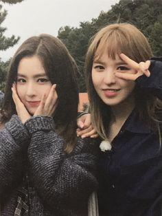 Irene Red Velvet, Wendy Red Velvet, Red Velvet Joy, Black Velvet, Seulgi, Kpop Girl Groups, Korean Girl Groups, Kpop Girls, My Girl