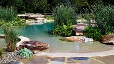 Tendencia en piscinas ¡no vas a querer salirte! - The Deco Journal