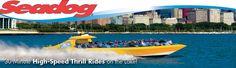 Chicago Speedboat Lake Tours - Seadog Cruises Navy Pier