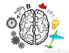 cerebro humano hemisferios - Buscar con Google