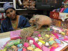 Witches Market, La Paz by Matthew Winterburn, via Flickr
