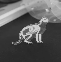 Creepy or cute? You decide! This cat skeleton pin is made of acrylic and zinc alloy. Crazy Cat Lady, Crazy Cats, Cat Skeleton, Here Kitty Kitty, Kitty Cats, Cat Jewelry, Jewellery, Maine Coon, Shape Patterns