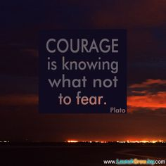 Courage is knowing what not to fear. ~Plato #entrepreneur #entrepreneurship #quote