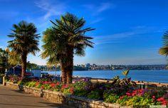 英吉利灣海灘|EnglishBayBeach, 溫哥華|Vancouver, 卑詩省|BritishColumbia, 加拿大|Canada #Vancouver #Metro #MetroVancouver #BC #Province #BritishColumbia #British #Columbia #Canada #English #Bay #EnglishBay #EnglishBayBeach #Beach