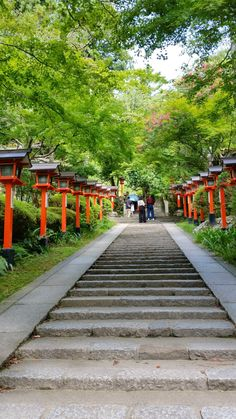 kyoto japan travel tips. japan things to do. beautiful places to visit. to visit in asia destinations Tokyo To Kyoto, Tokyo Japan Travel, Japan Travel Tips, Kyoto Japan, Asia Travel, Okinawa Japan, Beautiful Places To Visit, Cool Places To Visit, Japan Travel Photography