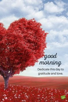 Good morning quote on picture with heart shaped tree.