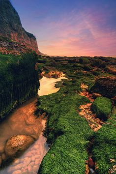 Low tide at Pett Level - East Sussex Beautiful World, Beautiful Places, Beautiful Pictures, Beautiful Scenery, Amazing Photos, Sea To Shining Sea, Rock Pools, East Sussex, British Isles