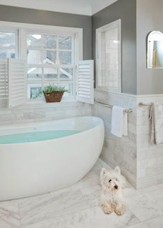 Bathroom Remodel renovation design cabinetry countertops tub Hyde Park - National