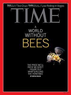 The Plight of the Honeybee by Bryan Walsh article attached via Time Magazine 8-19-13....Great job Time!