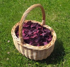 Blackberry Rose Petal Confetti Basket - perfect for bridesmaids to scatter and guests to throw! The Real Flower Petal Confetti Company. #weddingconfetti #biodegradableconfetti #naturalconfetti #realflowerpetalconfetti #rosepetals