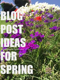 Blog Post Ideas for
