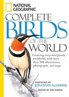 Znalezione obrazy dla zapytania bird cover