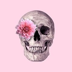 Flower Skull Art Print by Paul Fuentes Design. Shop unique, cool products on Fy ✓ Free, fast shipping ✓ 28 day returns ✓ Rated / 5 by of shoppers Wallpaper Calaveras, Paul Fuentes, Canvas Artwork, Canvas Prints, Pink Skull, Flower Skull, Skull Print, Fabric Paper, Graphic Art