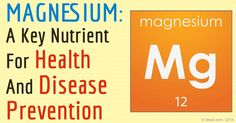 Magnesium plays an important role including optimizing mitochondrial function and the creation of ATP, regulation of blood sugar, and more. http://articles.mercola.com/sites/articles/archive/2015/12/28/magnesium-atp.aspx