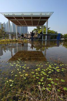 Wetland Park - an approach to shade.