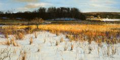 Peter Fiore January Shade oil/linen, 24x48